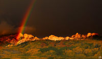 Colorado, rainbow, aspen, Kebler Pass, Ruby Range, Dyke, autumn