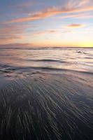 sea, grass, sunset, clouds, low tide, California, ocean
