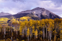 Colorado, aspen, autumn, West Beckwith, Elk Mountain, sunset, clouds