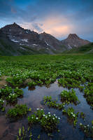 San Juan, mountain, Sneffels, Teakettle, Potosi, Yankee Boy, summer, wildflower, Colorado