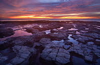 California, San Diego, Point Loma, Sunset Cliffs, sunset, low tide, coast