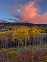 Colorado, aspen, tree, autumn, sunset, Wilson Peak, El Diente Peak, forest, clouds, Uncompahgre National Forest