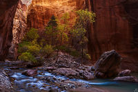 Utah, Zion, fall, autumn, Narrows, slot canyon, Virgin, river
