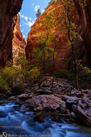 Utah, Zion, Narrows, slot canyon, Virgin, river