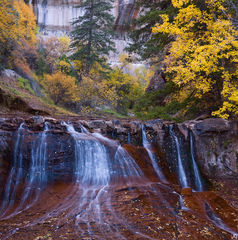 Utah, Zion National Park, autumn, waterfall, Left Fork, backcountry