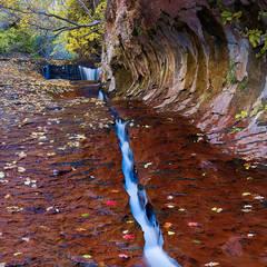Utah, Zion National Park, crack, subway, autumn, creeks