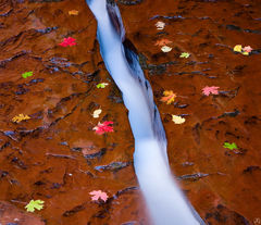 Utah, Zion National Park, subway, crack, creek, backcountry