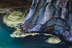 Utah, Zion National Park, subway, whirlpools, stream, autumn, pools, backcountry