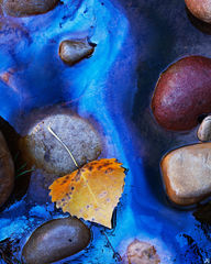 utah, zion, river, oil, metallic, refleciton, autumn