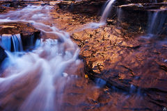 stream, zion, utah, gold