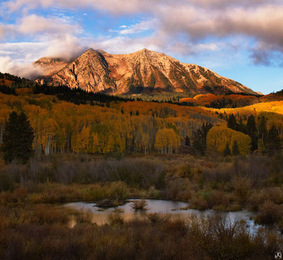 Colorado, aspen, forest, East Beckwith Mountain, Kebler Pass, autumn, sunrise