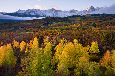 Colorado, aspen, Sneffels, Sneffels Range, San Juan Mountains, Dallas Divide, autumn