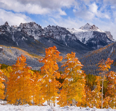 Colorado,San Juan Mountains, aspen,fall,snow