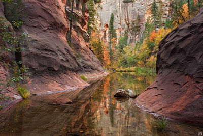 Arizona, Sedona, Oak Creek, West Fork, fall, pool