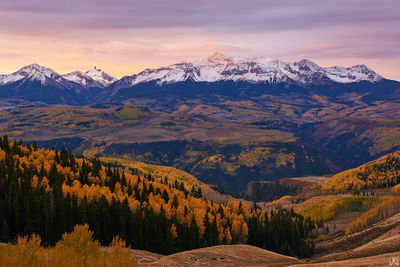 aspen, fall, autumn, Colorado