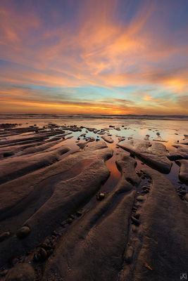 California, Encinitas, low tide, coast, sand, roots, ocean, reflections, rocks