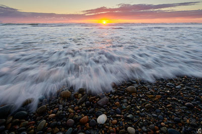 California, Encinitas, seashell, beach, sand, rocks, sunset