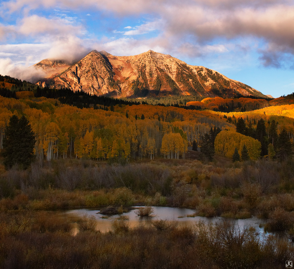 Colorado, aspen, forest, East Beckwith Mountain, Kebler Pass, autumn, sunrise, photo