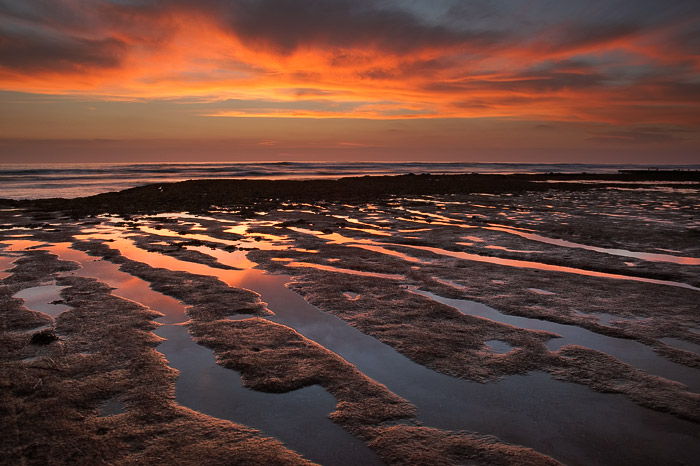 low tide, reflection, sunset, California, ocean, sea, photo
