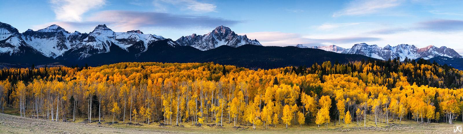 An autumn aspen forest climbs up the hillside and foothills of the Sneffels Range.
