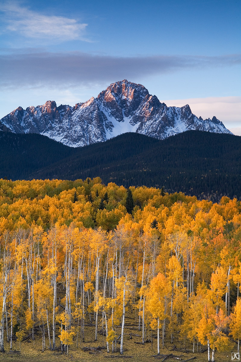 The colorful autumn aspen forest below Mt Sneffels glows in the early morning light.
