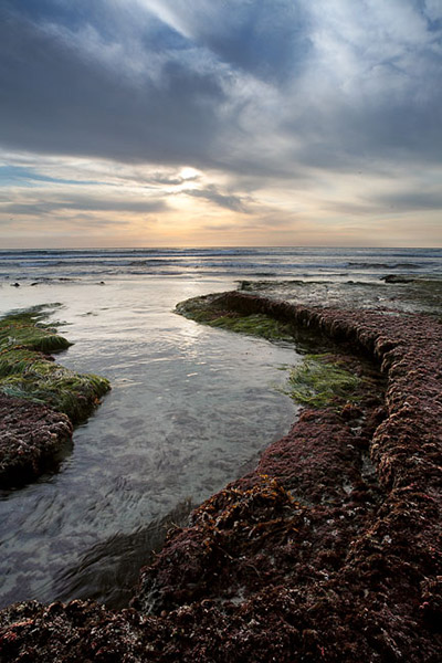 clouds, sunset, grass, rock, sea, Swamis, Encinitas, low tide, photo