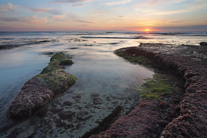 clouds, sunset, grass, rock, sea, pastel, Swamis, Encinitas, photo