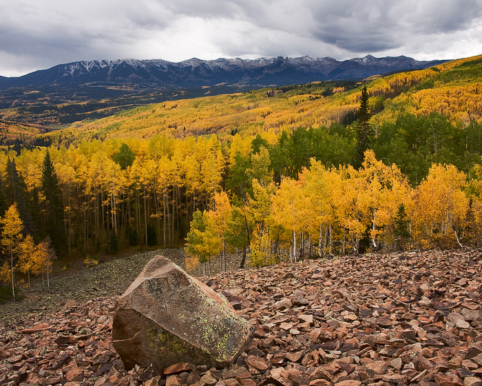An early morning storm above the Castles near Ohio Pass in the West Elk Mountains brings moisture to the autumn aspen trees.