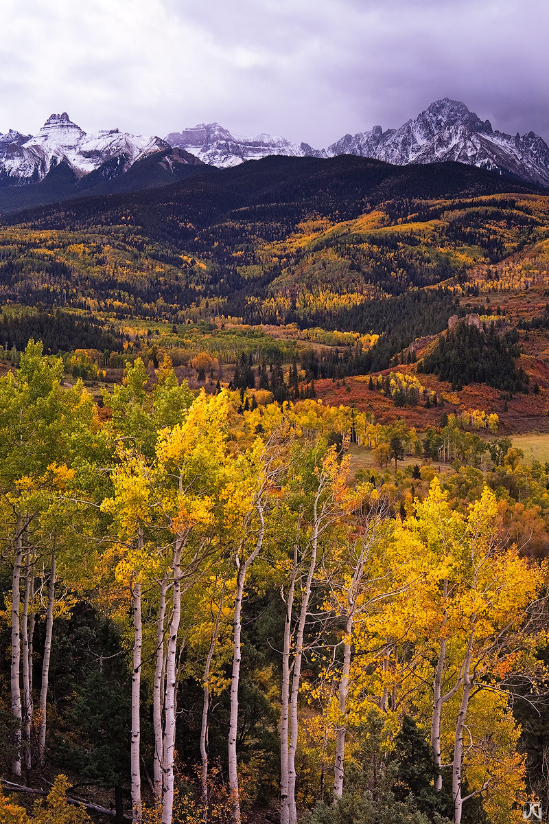 Autumn colors pop in the soft light of an overcast day beneath the Sneffels Range of the San Juan Mountains.