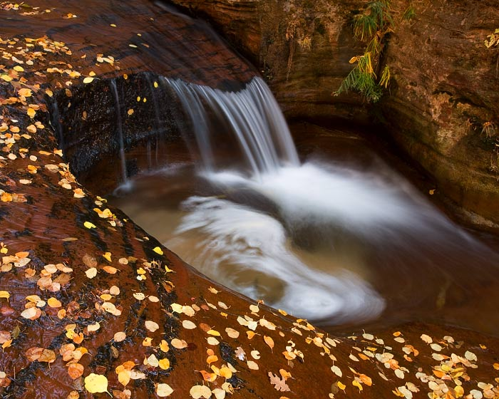 Zion, Utah, autumn, leaves, fall, waterfall, pool, stream, photo