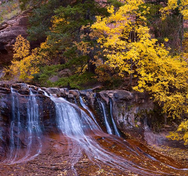 Zion, Utah, waterfall, Subway, autumn, creek, stream, photo