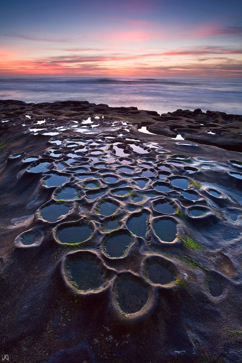 California, La Jolla, San Diego, coast, mitosis, photo
