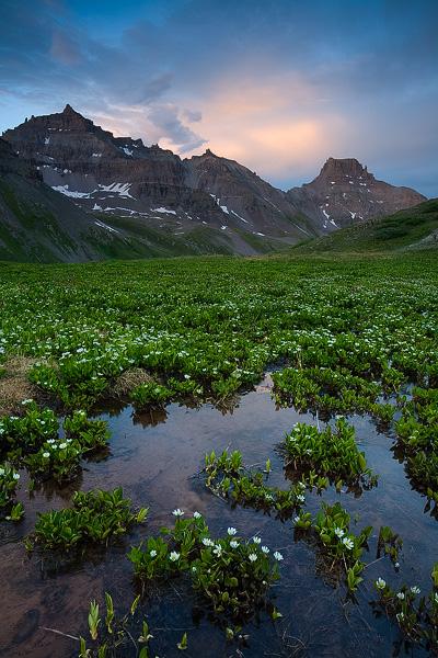 San Juan, mountain, Sneffels, Teakettle, Potosi, Yankee Boy, summer, wildflower, Colorado, photo