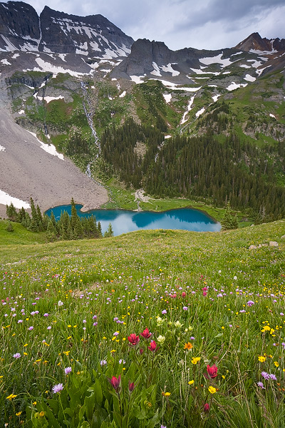 Colorado, Sneffels, mountain, wildflower, lake, summer, photo