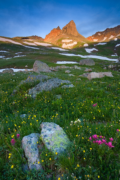 Colorado, wildflower, Ice Lake Basin, Golden Horn, Pilot Nob, San Juan Mountains, photo