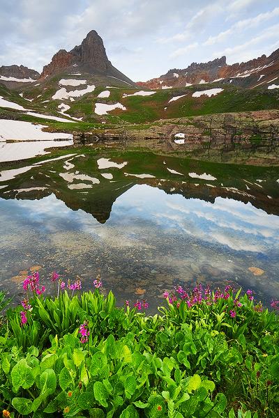 Golden Horn, Pilot Knob, wildflower, mountain, summer, sunrise, morning, reflection, lake, Colorado, photo