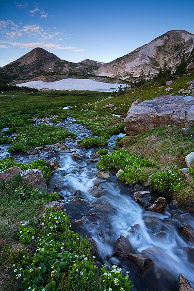 Wildflowers surround a summer cascade, as it flows toward Sugarloaf Peak and Medicine Bow Peak in the Snowy Range of Wyoming.