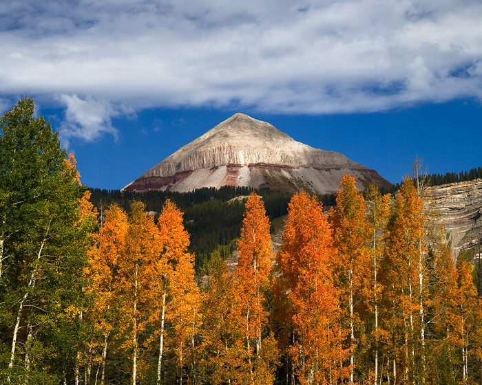 mountain, aspen, fall, autumn, Colorado, Engineer, sky, clouds, San Juan, photo