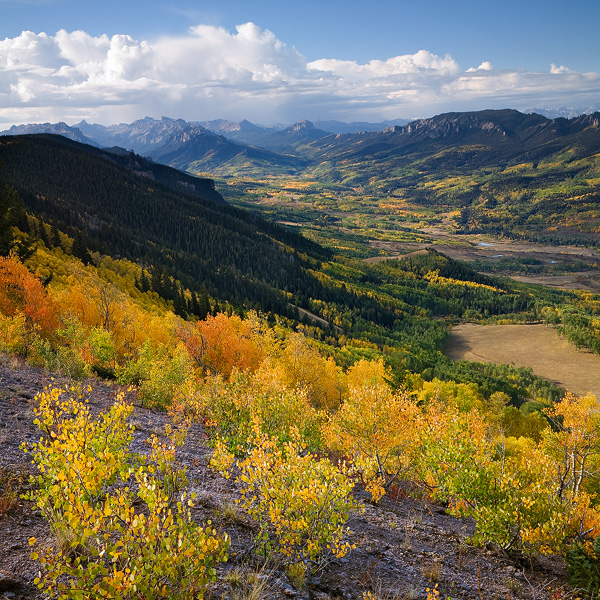 aspen, autumn, fall, valley, tree, mountain, range, Cimarron, Colorado, San Juan, clouds, storm, rai, photo