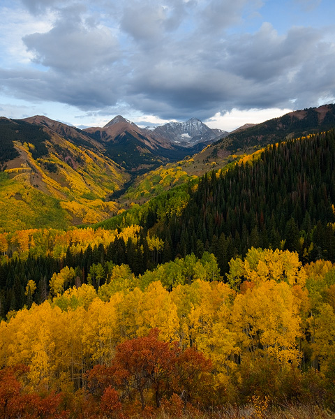 Autumn brings change to the aspen leaves, as well as to the scrub oak. This is evident here in the Capitol Creek Valley of Colorado...