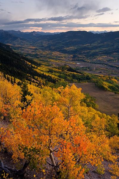 Colorado, aspen, tree, autumn, fall, evergreen, Cimarron, clouds, valley, sunset, photo