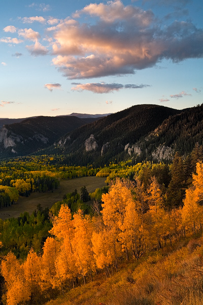 Colorado, aspen, tree, autumn, fall, evergreen, Cimarron, clouds, valley, morning, sunrise, photo