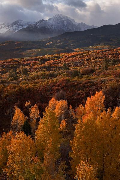 Colorado, aspen, Dallas Divide, Sneffels Range, autumn, sunrise, San Juan Mountains, photo