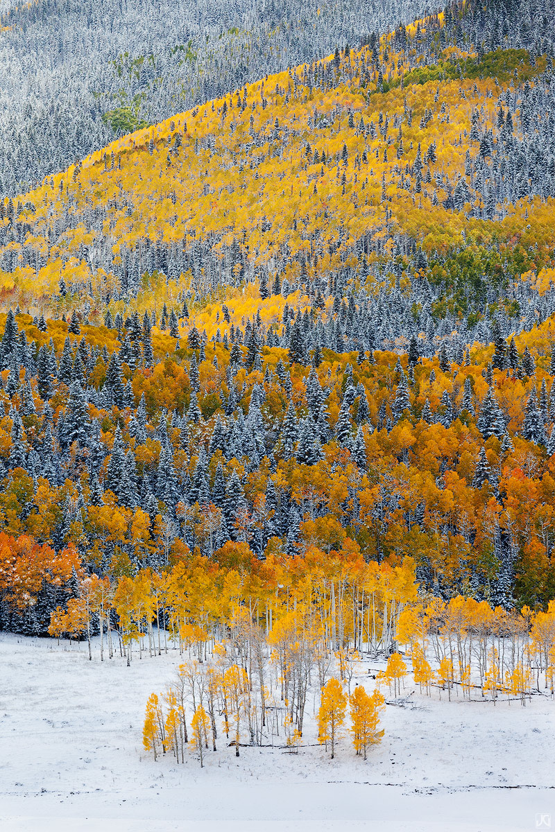 Colorado, Autumn, aspen, snow, trees, San Juan, mountains, photo