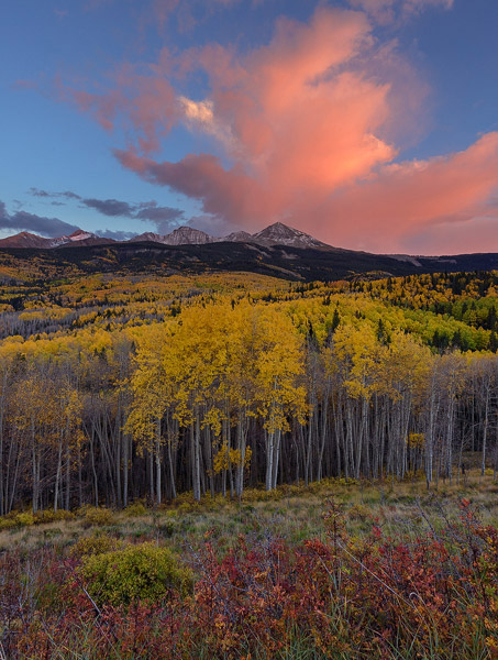 Colorado, aspen, tree, autumn, sunset, Wilson Peak, El Diente Peak, forest, clouds, Uncompahgre National Forest, photo