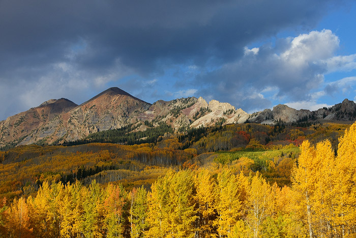 Colorado, aspen, autumn, tree, fall, Kebler, Mt. Owen, photo