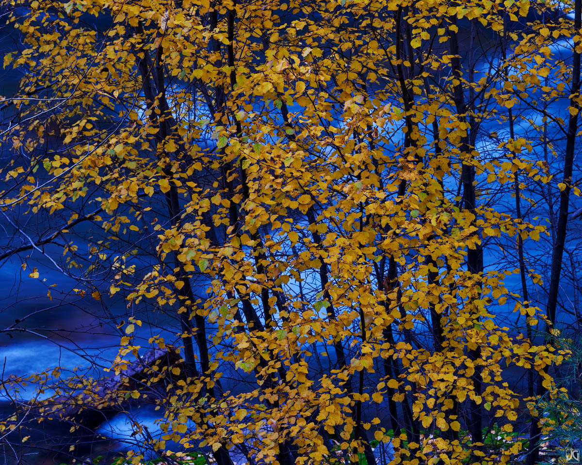 fall, river, Colorado, photo