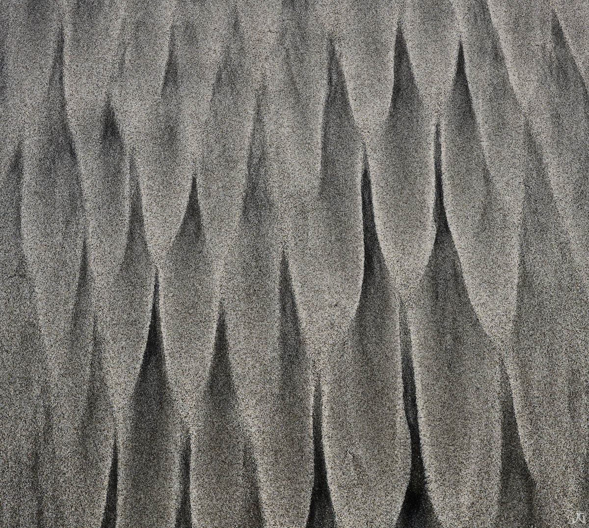 California, sand, beach, dunes, desert, patterns, photo