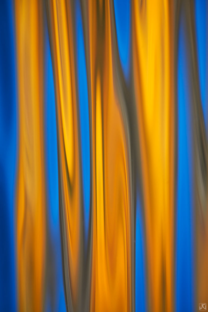 colorado, autumn, aspen, reflections, trees, pond, fire, photo
